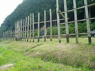 処理済~設楽原古戦場の馬防柵とジャン妻(このころは細かった).jpg